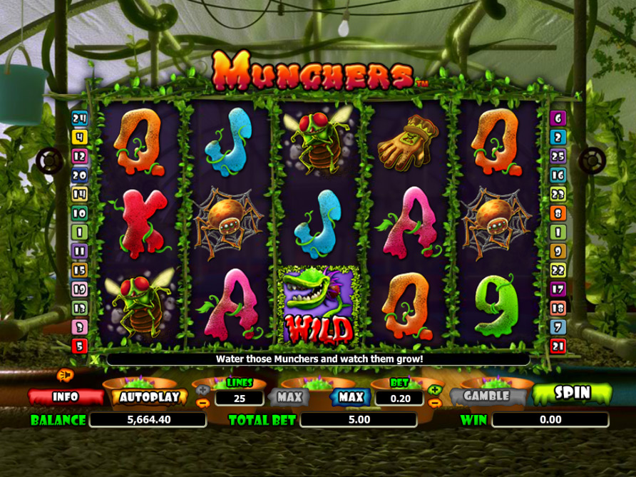munchers casino
